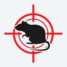 icon_rat.jpeg