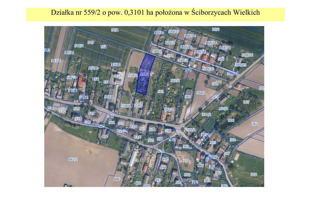 mapa Ściborzyce Wielkie działka nr 559_2-1.jpeg